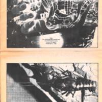 Argus Vol. 25 No. 9 - Nov 03, 1988.pdf